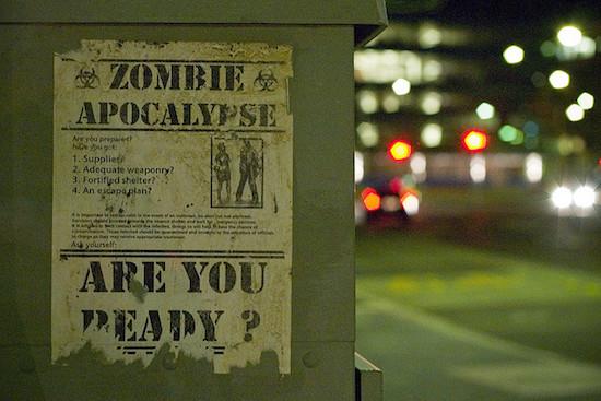 Zombie Survival Poster